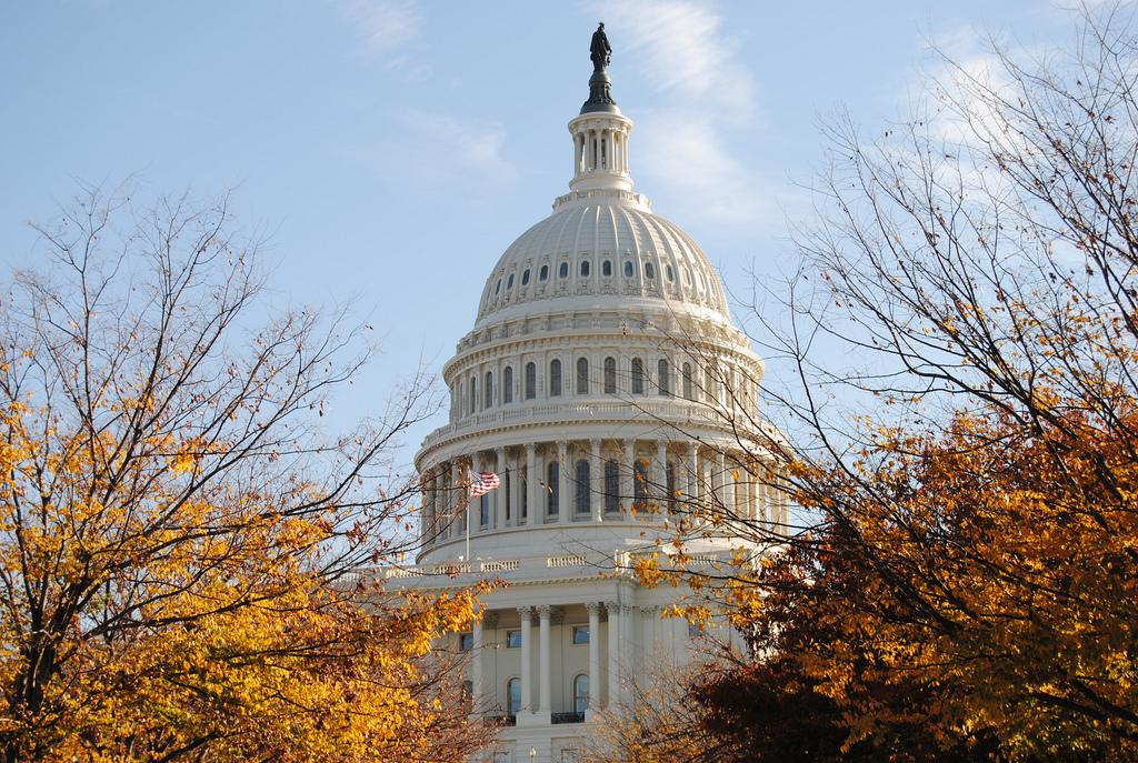 Capitol Building, Washington DC. (Flickr Creative Commons).