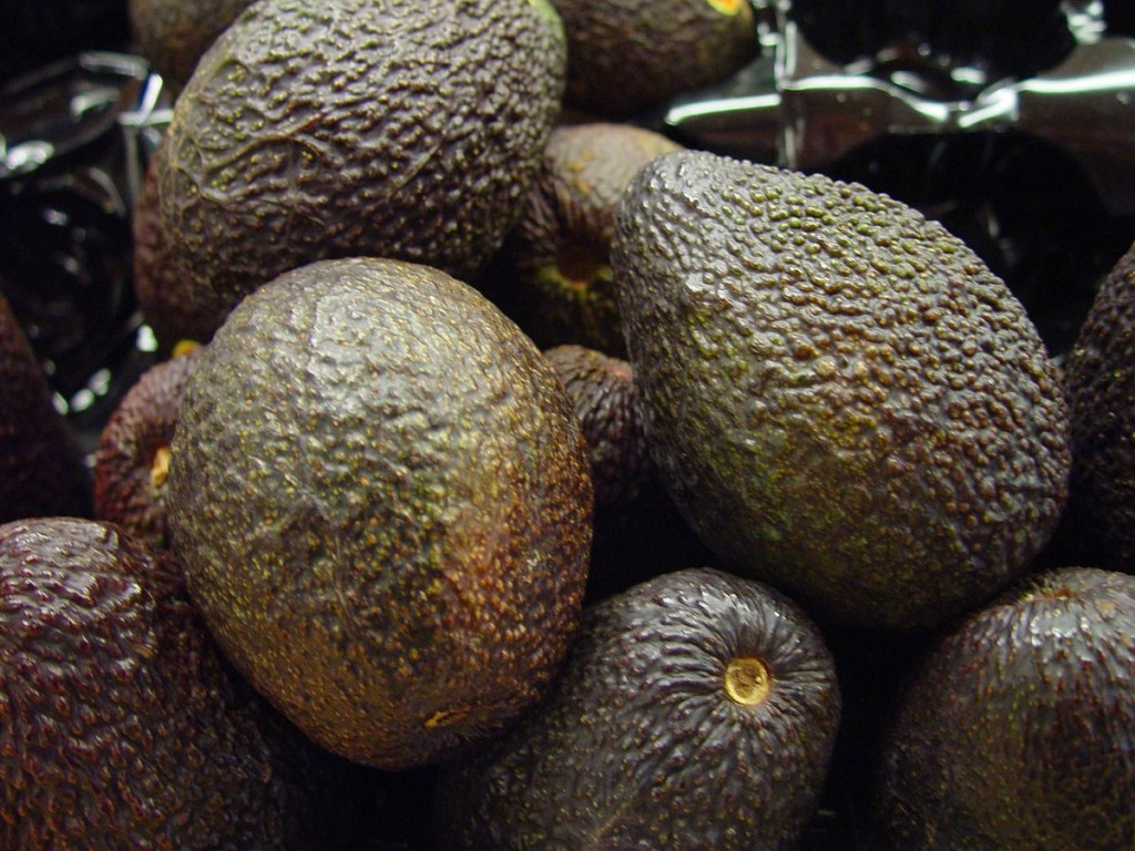 "In recent years, avocados have become a lucrative American fad, earning them the name ""Green Gold""."