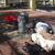 Ignored: The Growing San Diego Homeless Epidemic