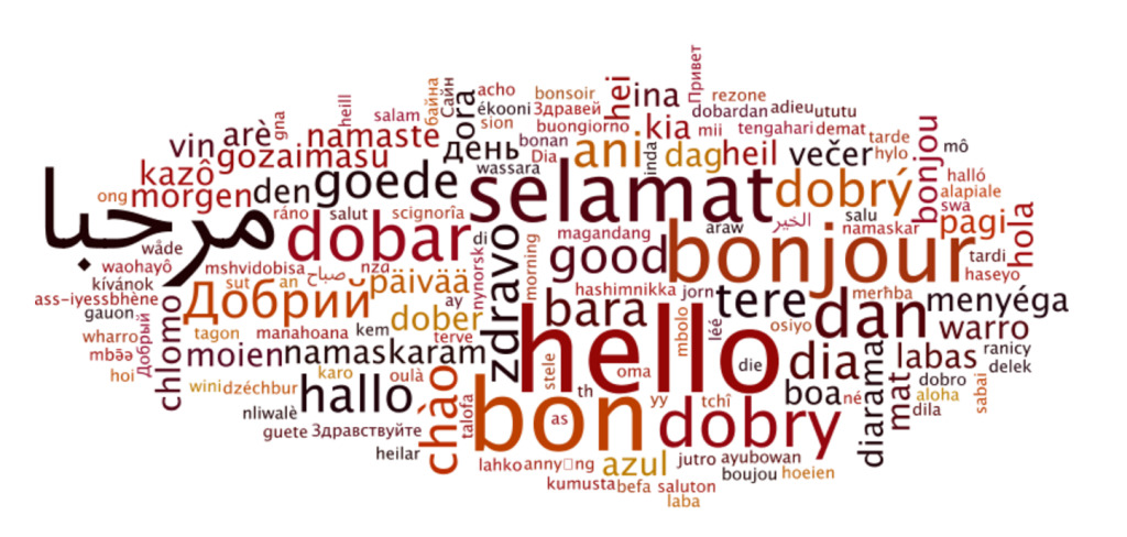 There are about 6909 languages in the world (http://www.linguisticsociety.org/content/how-many-languages-are-there-world)