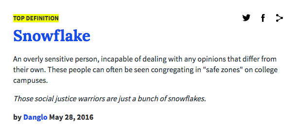 It's as much about liberal aesthetics and stereotypes as policy (Urban Dictionary)